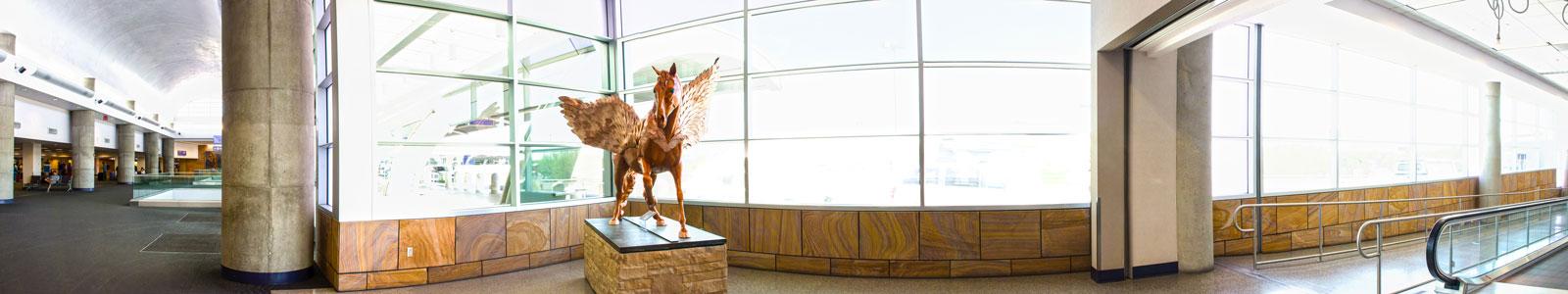 Pegasus Panorama